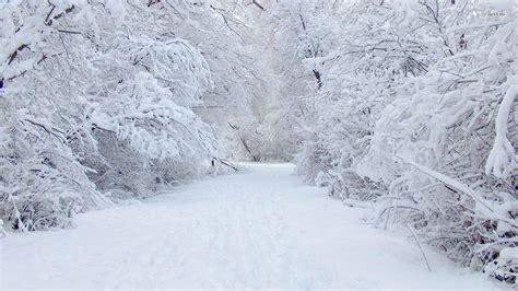 snow images snow wallpaper 1920x1080 79840