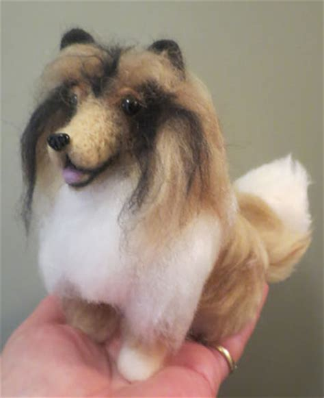 honor havanese reviews terrier puppy cut by designs by at the shoppe