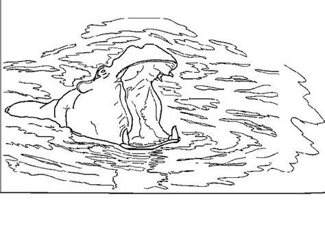 mewarnai kuda nil gif gambar animasi animasi bergerak 100 gratis