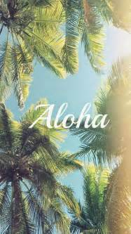 Palm Tree Wallpaper by Aloha Palm Trees Iphone 5s Wallpaper Iphone 5 S