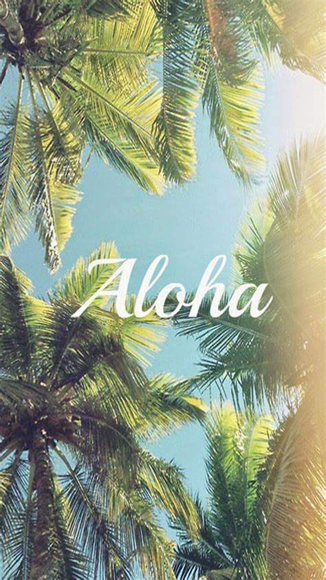 wallpaper tumblr aloha aloha palm trees iphone 5s wallpaper iphone 5 s