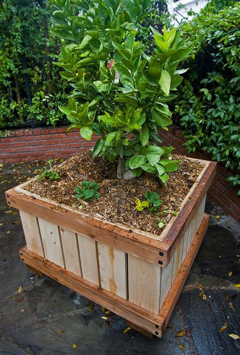 Rolling Planter by Rolling Quot Yard Quot Planter 3x3 X27 Quot Everything Planter Built
