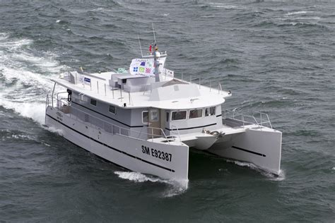 grand catamaran a vendre un grand catamaran 224 moteur pour votre croisi 232 re bob