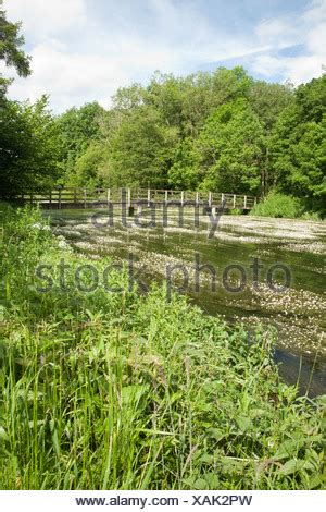 footbridge over the river kennet at chilton foliat near