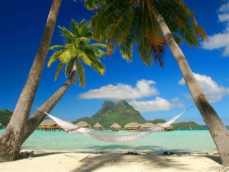 Brazilian Hammock Chair Free Tropical Beach Backgrounds Just For Sharing