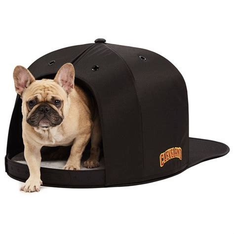 indoor pet house nap cap x nba golden state warriors indoor pet house blue