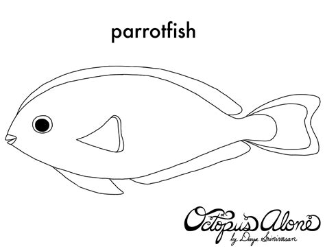 coloring pages of parrot fish parrot fish coloring page sketch coloring page
