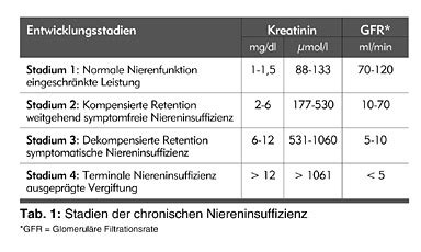 niereninsuffizienz ernährung tabelle niereninsuffizienz stadium ern 228 hrung bei