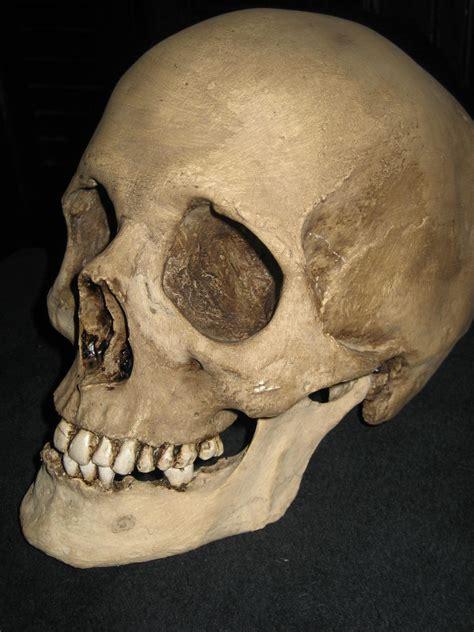 imagenes de calaveras humanas mira el verdadero rostro de algunos musicos taringa