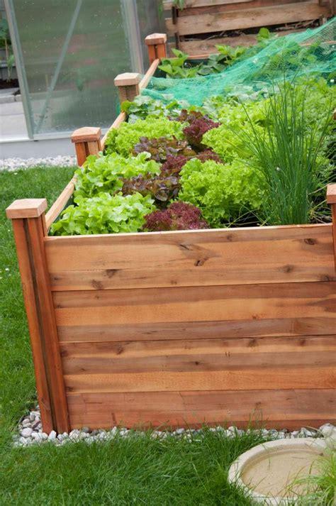 come creare un orto in terrazzo orto in terrazzo fai da te aq61 187 regardsdefemmes
