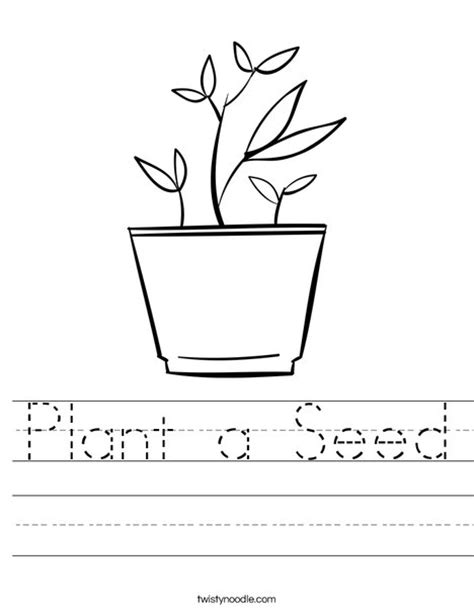 Plant Coloring Worksheet by Plant A Seed Worksheet Twisty Noodle