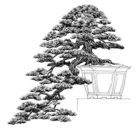 libro bonsai the art of dibujo del maestro venezolano nacho marin perteneciente a su libro 100 bonsai bonsai drawing