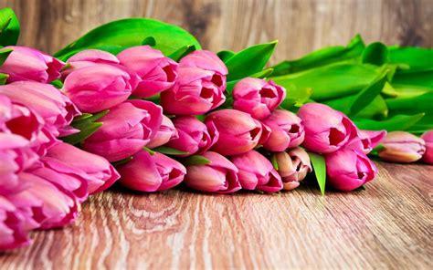 sfondi fiori di pesco desktop primavera fiori di