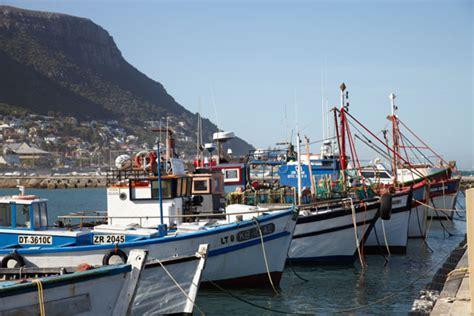 ranger boats south africa harbour house restaurant kalk bay harbour sydafrika