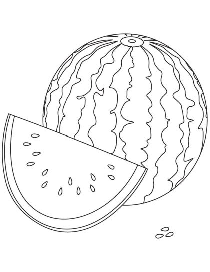 whole watermelon coloring page watermelon clipart colouring page pencil and in color