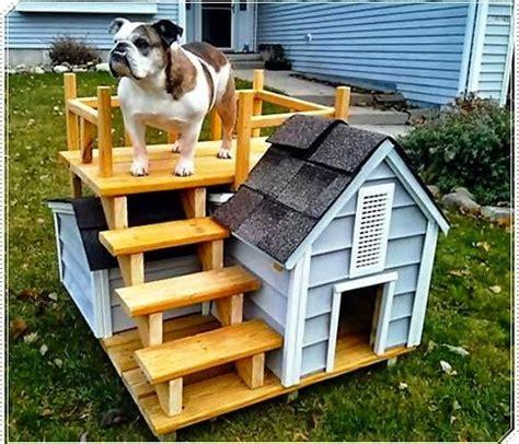 casa para perros las mejores casas para perro conociendo a mi perro