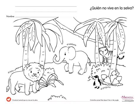 animal worksheet new 293 jungle animal worksheets