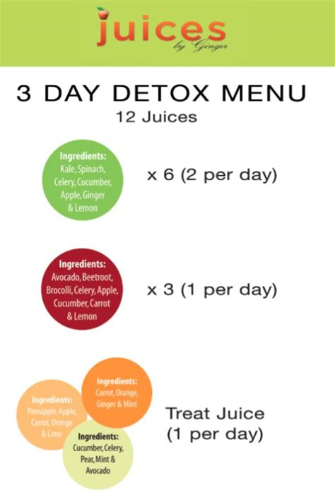 3 Day Vegetable Smoothie Detox by Juices By 3 Day Detox Diary Collegetimes