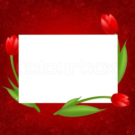blank valentines day card templates 3 tulips with blank valentines day card vector
