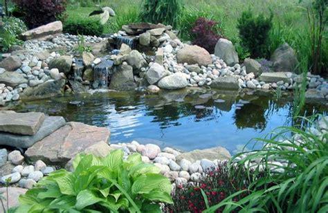 eccezionale Vasca Per Pesci Da Giardino #1: laghetto-da-giardino.jpeg