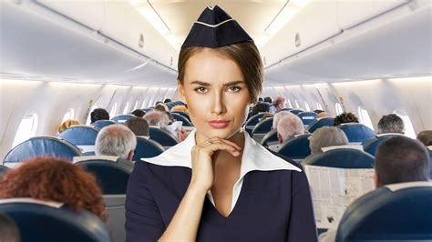 The Attendant confessions of a pissed flight attendant new york post