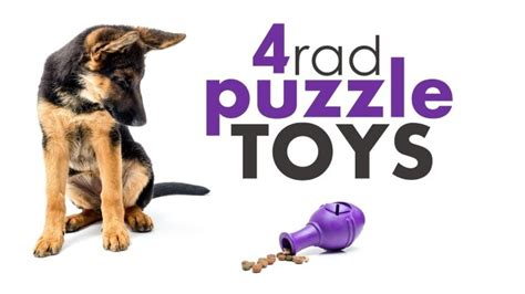 best puppy toys to keep them busy best puzzle toys help your pup stay busy herepup