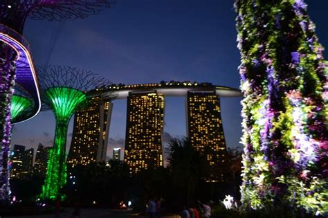 Hotel From Botanic Gardens Picture Of Marina Bay Sands Singapore Botanic Gardens Marina Bay