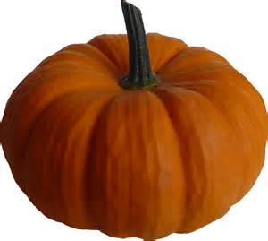 pumpkin pictures more free form selected items pd resources