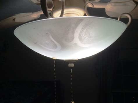 replacement ceiling fan light shades 100 replacement ceiling light globes ceiling perfect
