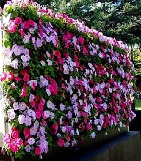vertical flower garden wall gardens and supported vertical garden ideas designs
