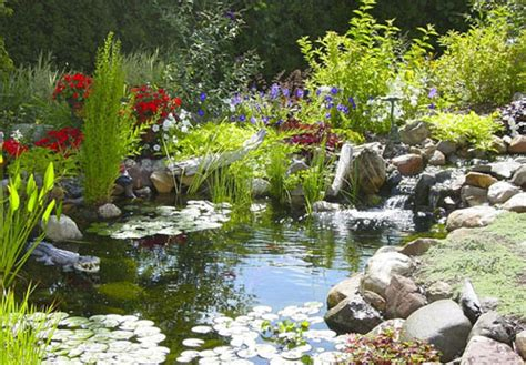 backyard pond construction backyard pond ideas