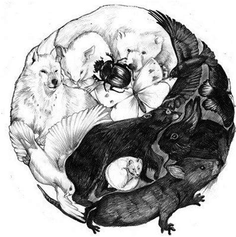 animal respect tattoo pinterest the world s catalog of ideas
