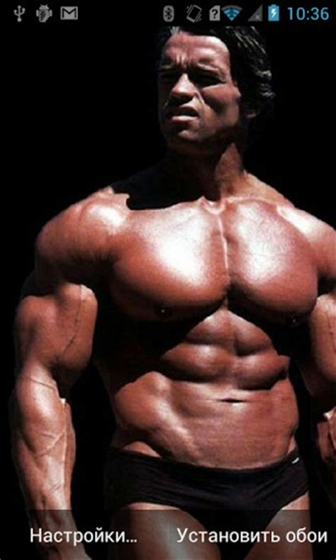 body builder themes download bodybuilding hd live wallpaper app for android by freesw