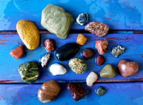 introduction to amazing hobby of rock collecting