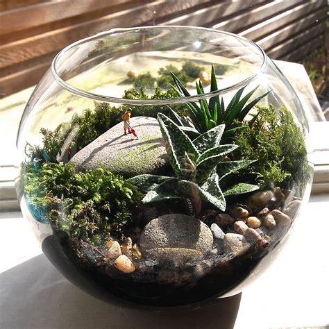 mini world terrarium kit hoovering  london garden