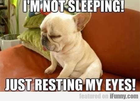 Meme Sleepy - i m not sleeping just resting my eyes ifunny com