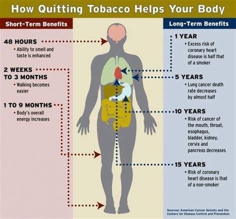 How Do You Detox Your From Nicotine by 12 Best Images About Stop Smoaking On You From