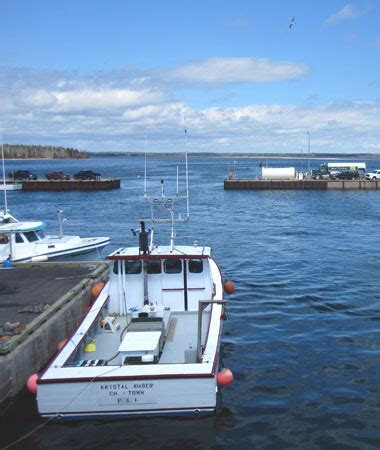boat accident in beach point pei beach point processing co processor wholesaler and