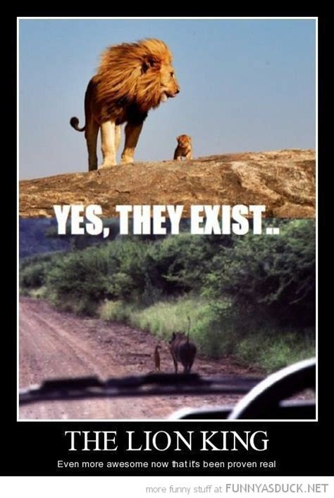 Lion King Schenectady Meme - funny disney they exist funny as duck funny pictures