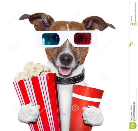 popcorn and dogs 3d glasses popcorn stock image image 27391765