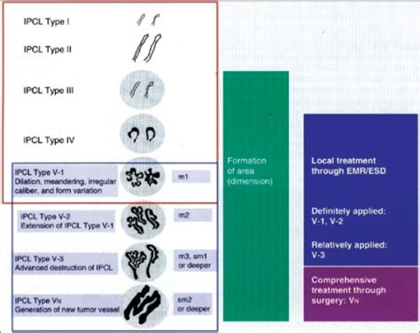 pattern classification using ann original intrapapillary capillary loop ipcl pattern c