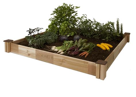 raised garden bed kit raised bed garden kits