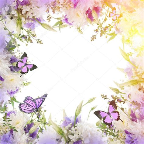 cornice immagine cornice con fiori e farfalle foto stock 169 seqoya 102588554