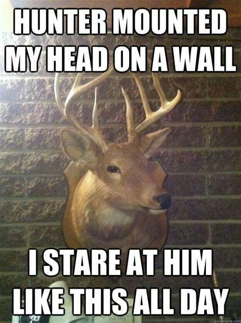 37 best funny deer hunting meme images on pinterest deer