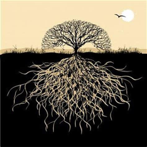 tree meanings gallery funny game celtic tree of life meaning
