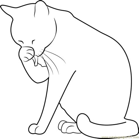 kitten face coloring page cat washing her face coloring page free cat coloring