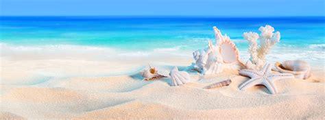 vacanza al mare green year la citta il mare gli stili di vita livorno 24