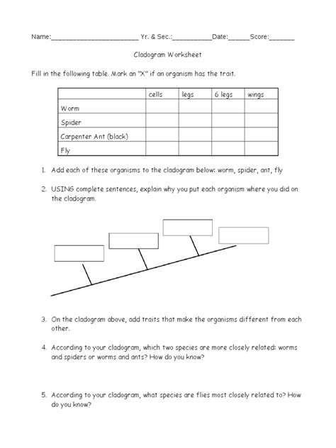 Cladogram Worksheet Answers by Pictures Cladograms Worksheet Getadating