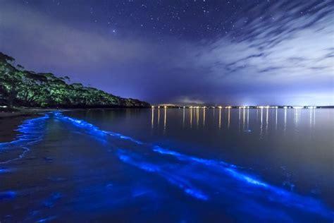 victorias por mar de 13 praias que brilham de verdade para se visitar pelo mundo