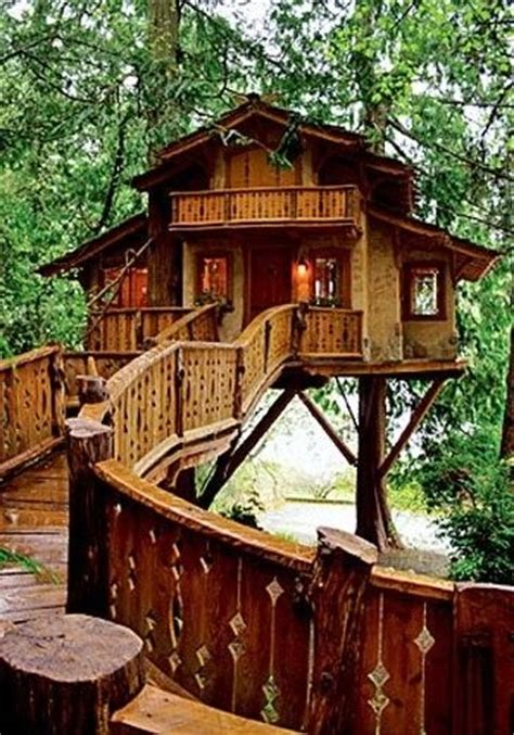 real treehouse 25 best ideas about tree houses on pinterest amazing